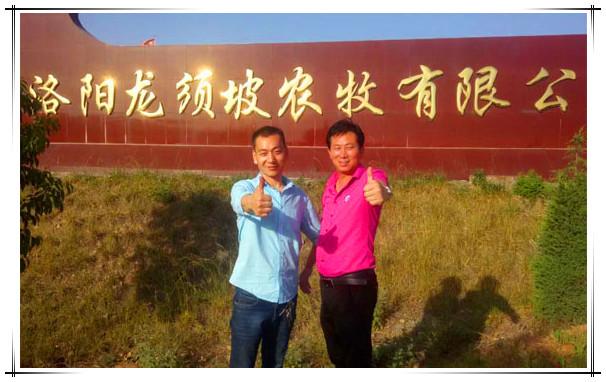 洛阳龙须坡农牧有限公司