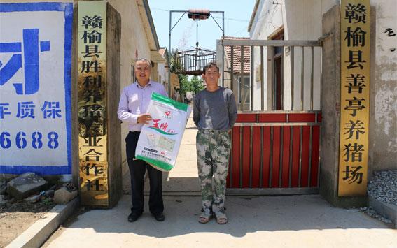 赣榆县胜利养猪专业合作社无抗养殖案例