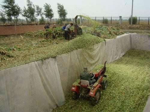 玉米秸杆青贮的制作要领