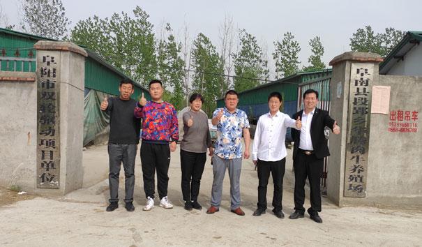 阜南县段郢乡华腾肉牛养殖场